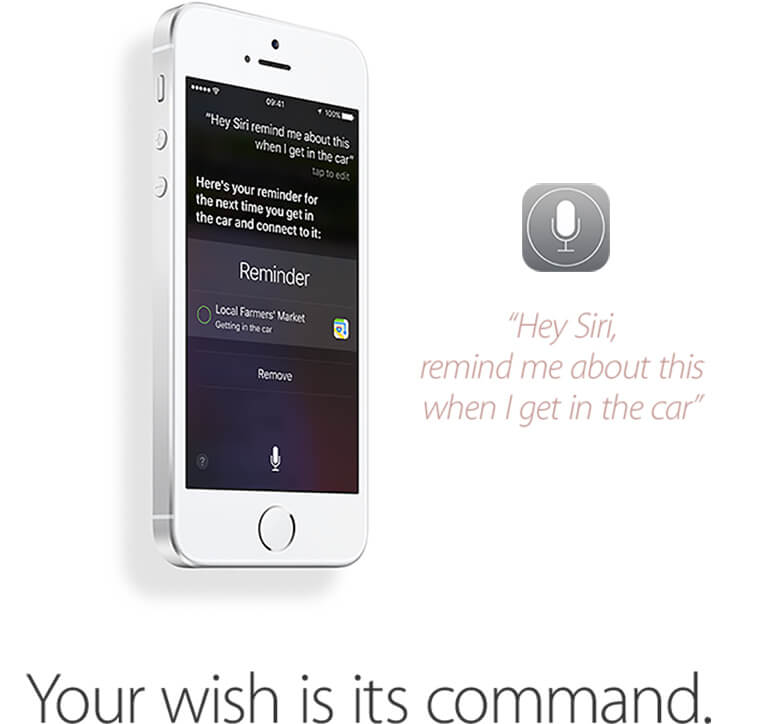 Your wish is its command.